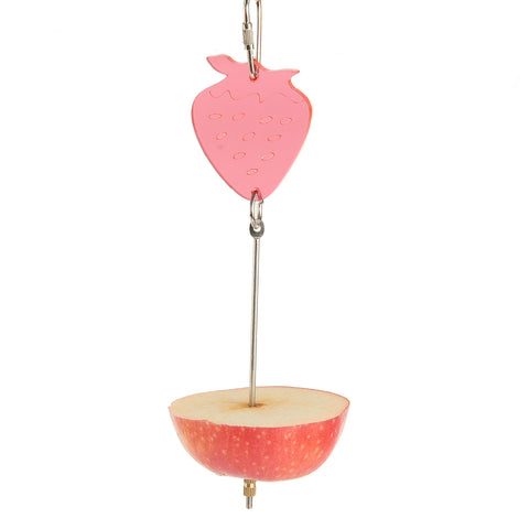 Fruit Spear Bird Toy
