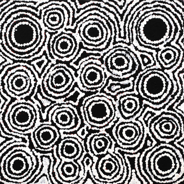 Kylie Napangardi Williams, Yarla Jukurrpa (Bush Potato Dreaming) - Cockatoo Creek, 30x30cm