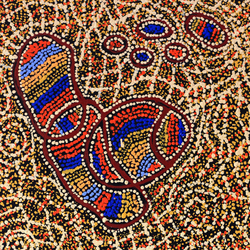 Aboriginal Art | Ormay Nangala Gallagher, Ngapa Jukurrpa (Water Dreaming) - Mikanji, 107x46cm