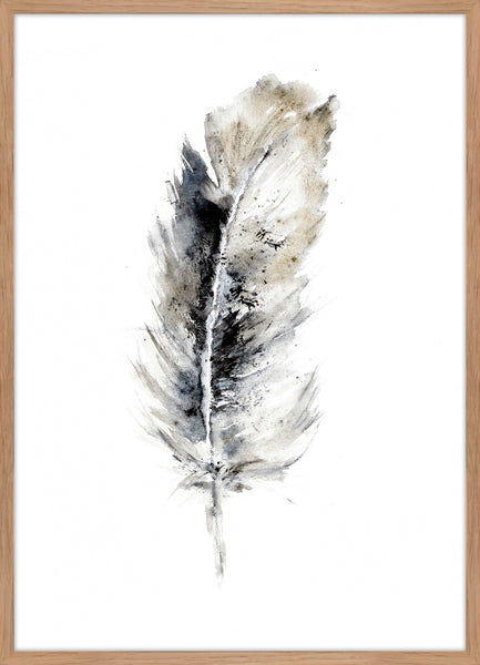 Cozy Feather 2