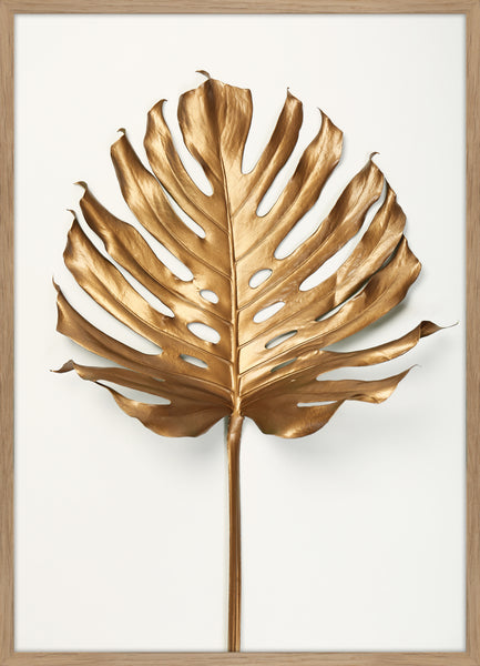 Monstera Gold Leaf | PLAKAT | POSTER