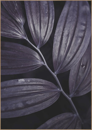 Dark plant 3 | Alu Art