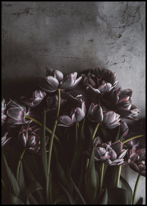 Dark tulips | ALU ART