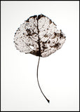 Leaf rustic | Alu Art