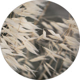 Mellow Grasses 4 | CIRCLE ART | RUNDE BILLEDER