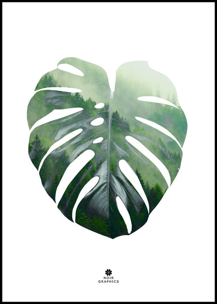 Monstera Leaf | Poster Board