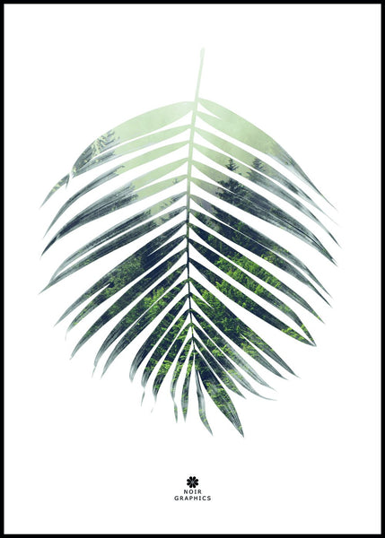 Palm leaf | Poster Board