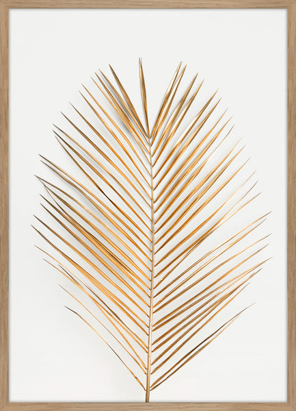 Palm Leaf Gold | PLAKAT | POSTER