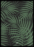 Tropical Bush | PLAKAT | POSTER