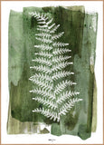 White Fern | Alu Art