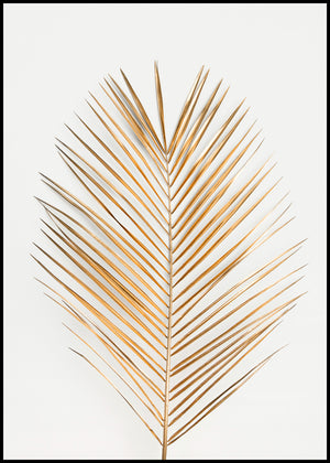 Palm Leaf Gold | Poster Board