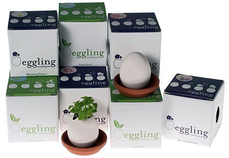 Eggling - Wild Strawberry