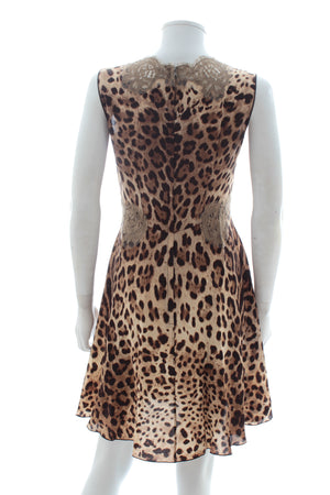 Dolce & Gabbana Lace-Trimmed Leopard Silk Dress