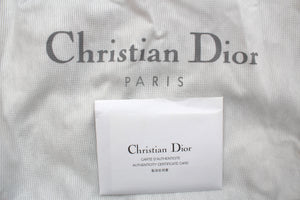 Dior Hardcore Crystal-Chain Satin Bag