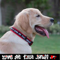 Love at First Sniff Dog Collar