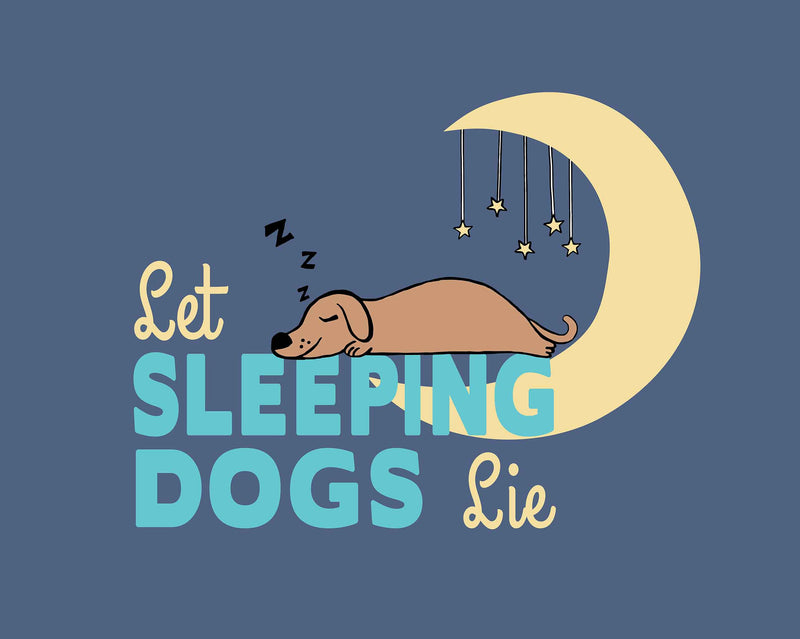 Let Sleeping Dogs Lie Dog Mat/
