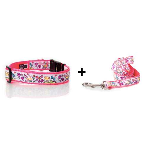 Tweet Tweet collar and leash combo