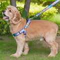 Pettraits Dog Harness and Leash Combo