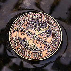 Carpe Noctem Coin - Antique Bronze (back)
