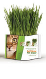Pet Grass Self Grow Kit - Organic Wheat Grass