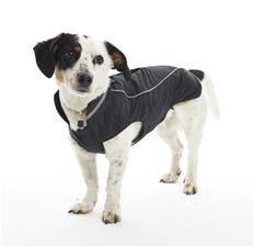 BUSTER Raincoat - Blackberry