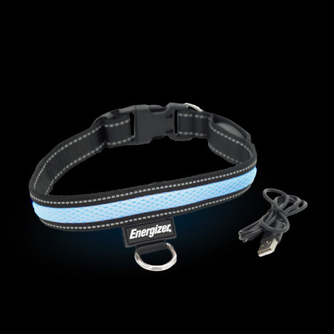 Energizer LED Dog Collar USB - Blue Blaze