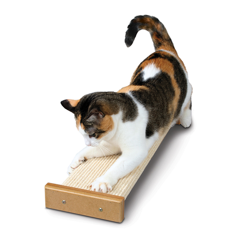 Bootsie's Combination Cat Scratcher