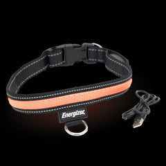 Energizer LED Dog Collar USB - Orange Blaze