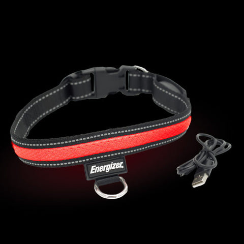 Energizer LED Dog Collar USB - Red Blaze
