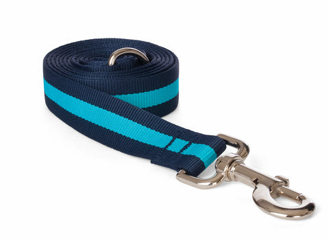 Fabdog Stripe Leash - Navy