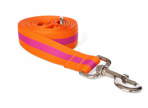 Fabdog Stripe Leash - Pink
