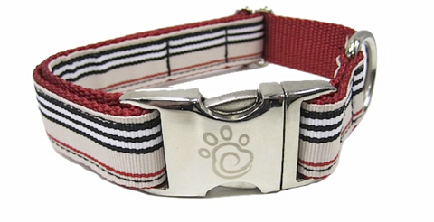 cfo Barkberry Collar