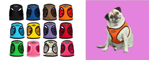 various color Mesh animal Harness