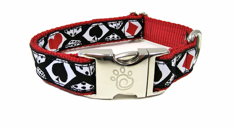 cfo Lucky Dog Collar