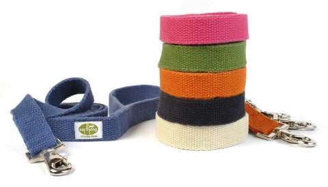 blue, pink, green, orange, white and black small dog leashes