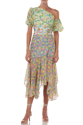 Jaylah Dress in Combo Anemone Floral