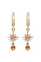 Lucky Star Earrings thumbnail