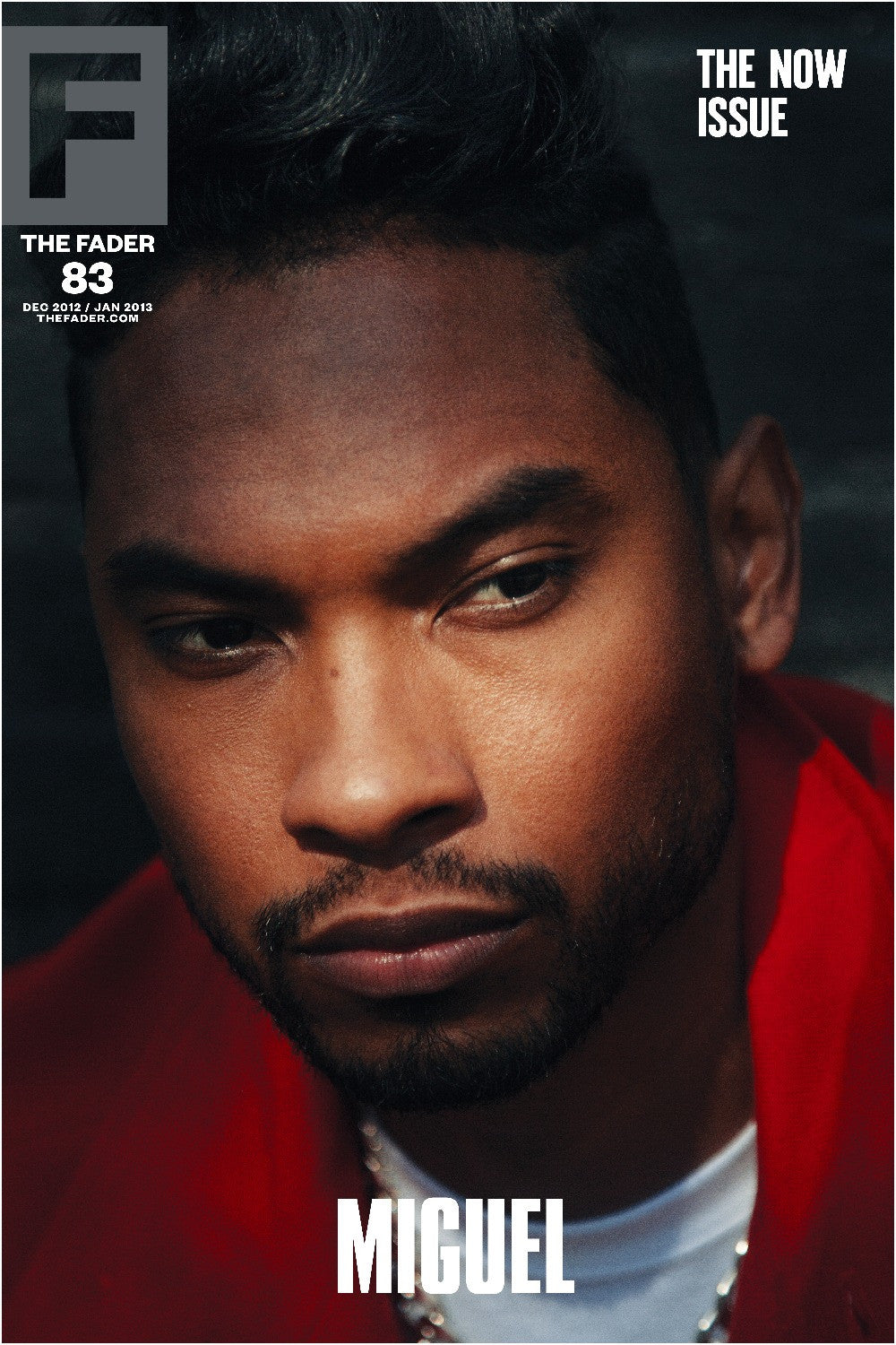 "Miguel / The FADER Issue 83 Cover 20"" x 30"" Poster - The FADER"