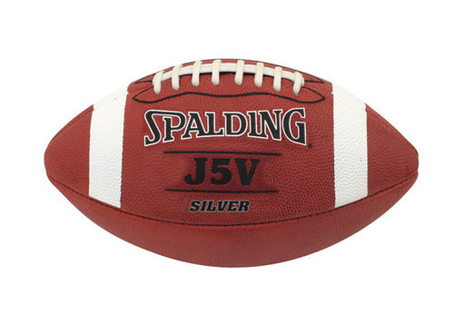 Spalding J5V Silver Leather - SportsTakeoff
