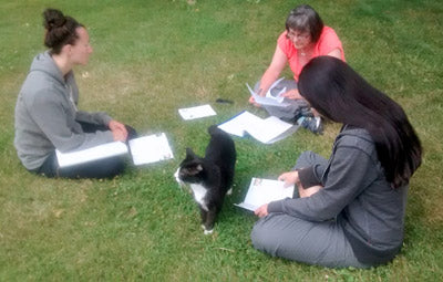 Introductory Course - Bach Students Pets