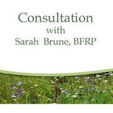Personal Consultation with Sarah Brune, BFRP (One Hour)