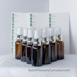 Spray Bottles and More Package