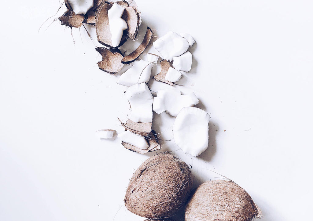 In Love With the Coco: Why We Love Coconut Oil for Dogs