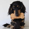 Banana + Gingerbread The Big One Dog Biscuit Bone Trio