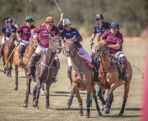 Private Polo Lesson from a Member of a Famed Argentine Polo Family