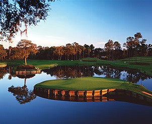 Private Golf Clinic with Professional Golfer at TPC Sawgrass
