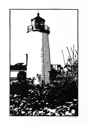 Plum Island Light, Newburyport - ArtLifting