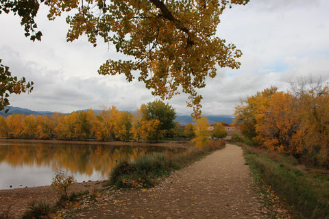 Fall in Boulder 10