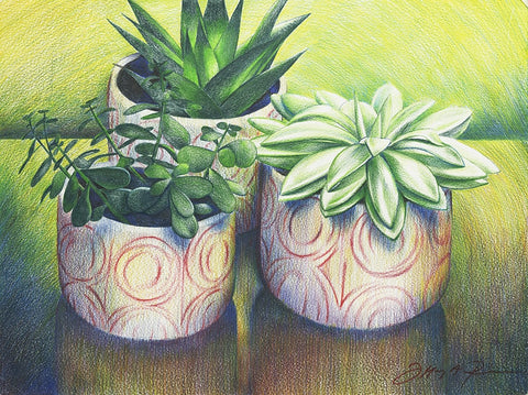 Three Succulents