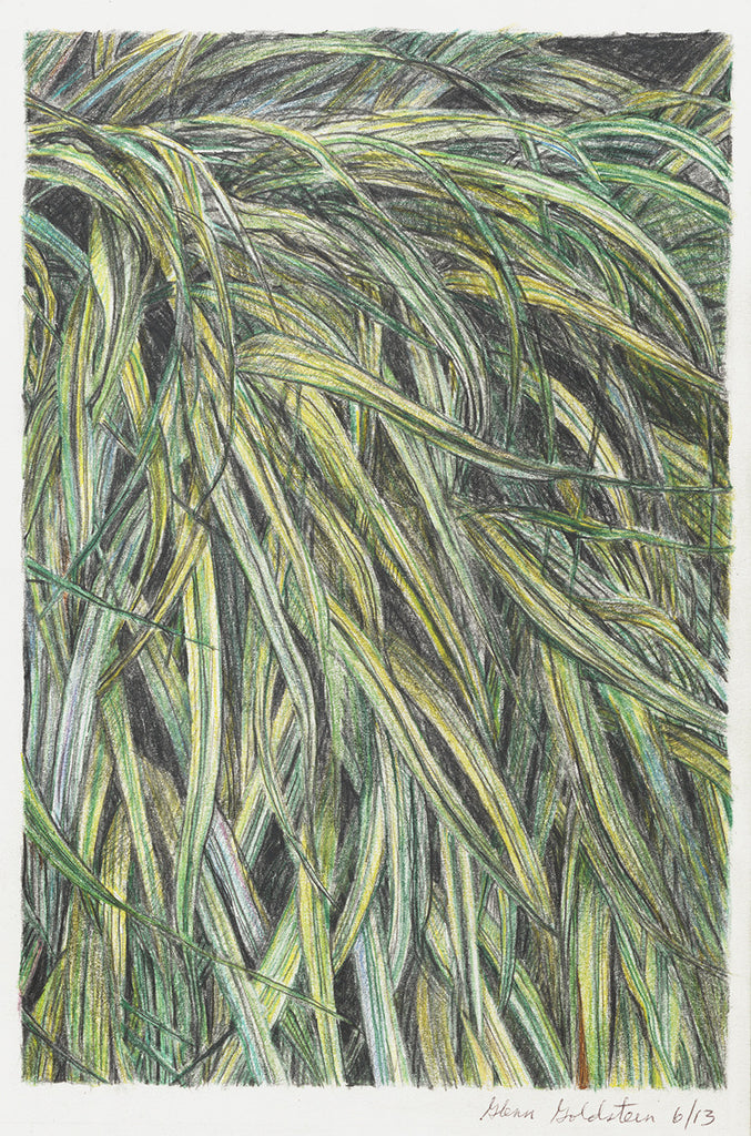 Leaves of Grass - ArtLifting